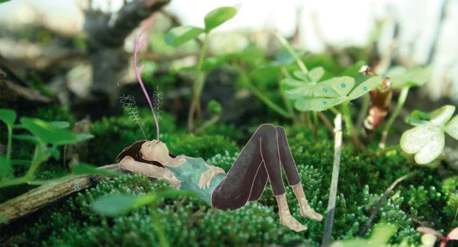 Descansar con Plantas: una invitación a «vegetar»
