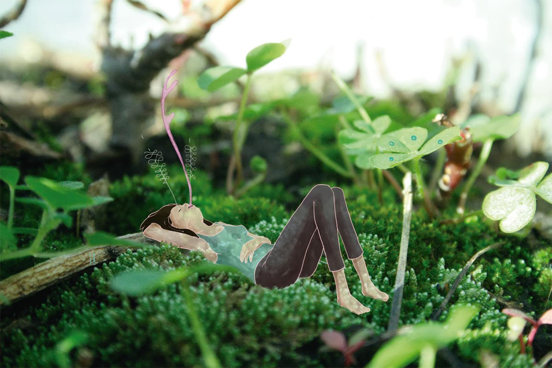 """Descansar con Plantas: una invitación a """"vegetar"""""""