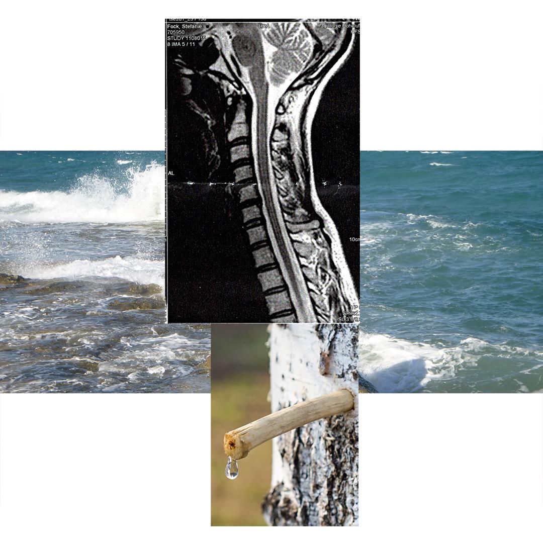 Flujos somáticos: reflexiones & prácticas