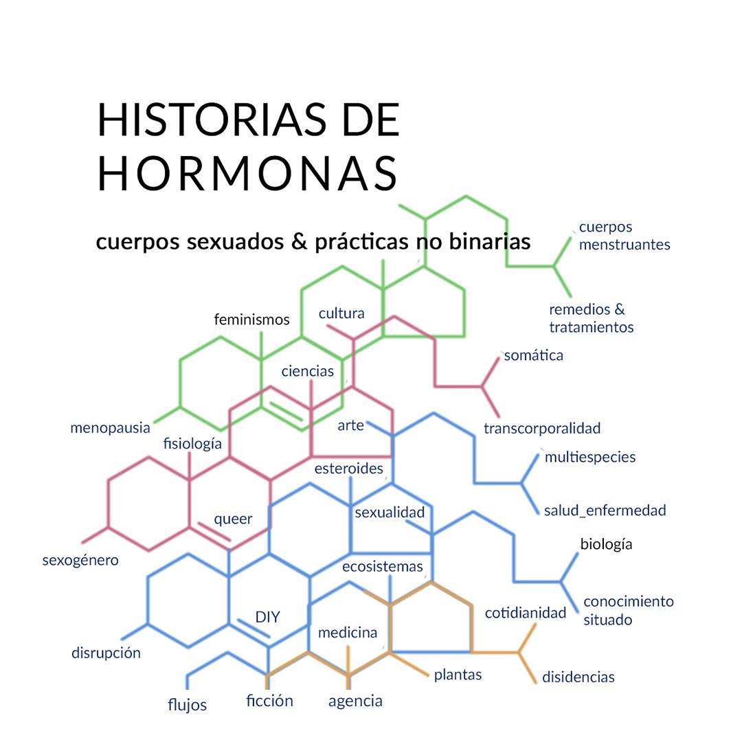 La multiplicidad de las HISTORIAS DE HORMONAS